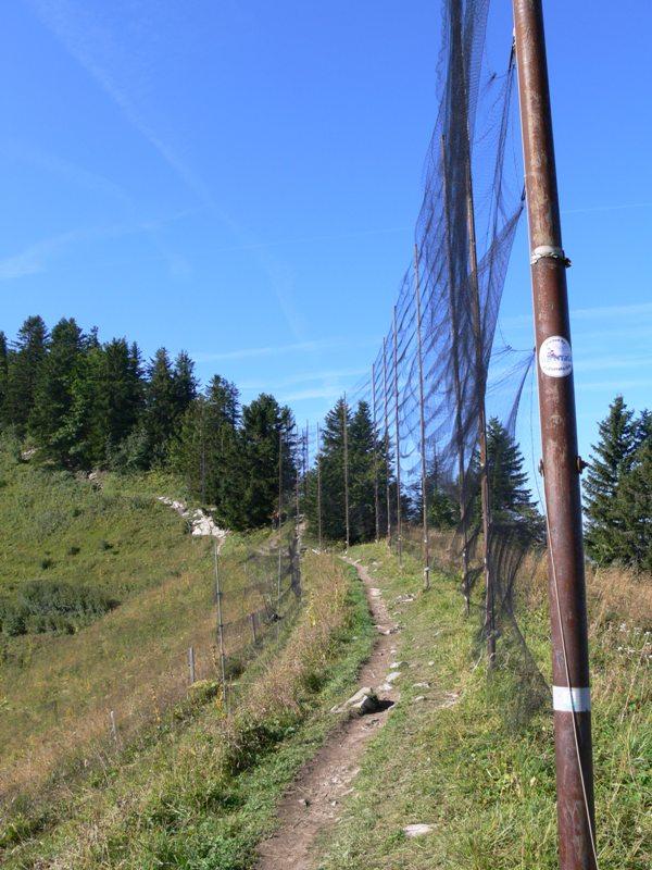 Odchytové sítě na 10 m vysokých sloupech. Foto - Jan Bartoníček.