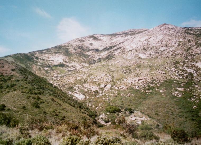 Elba - kamenité jižní svahy s typickou vegetací. Foto - Jiří Mach.