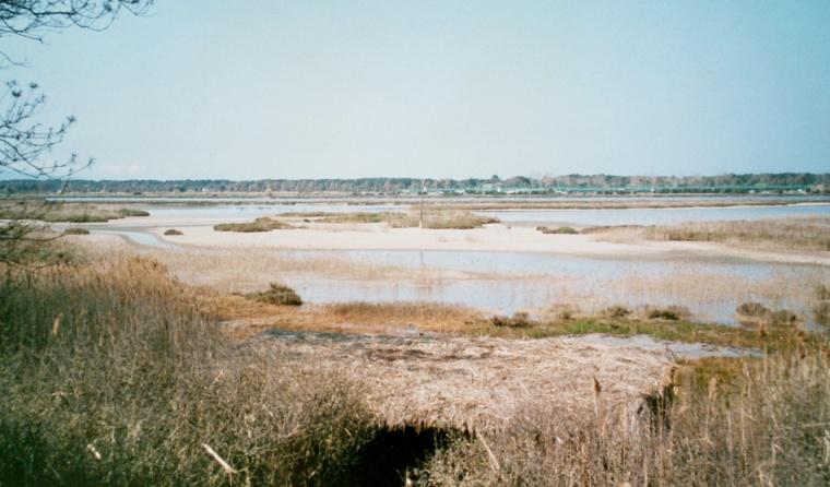 NP Orbetello - pohled na laguny. Foto - Jiří Mach.