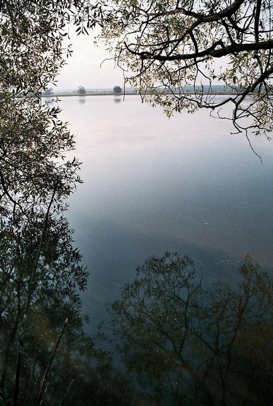 Třesický rybník. Foto L. Kadava
