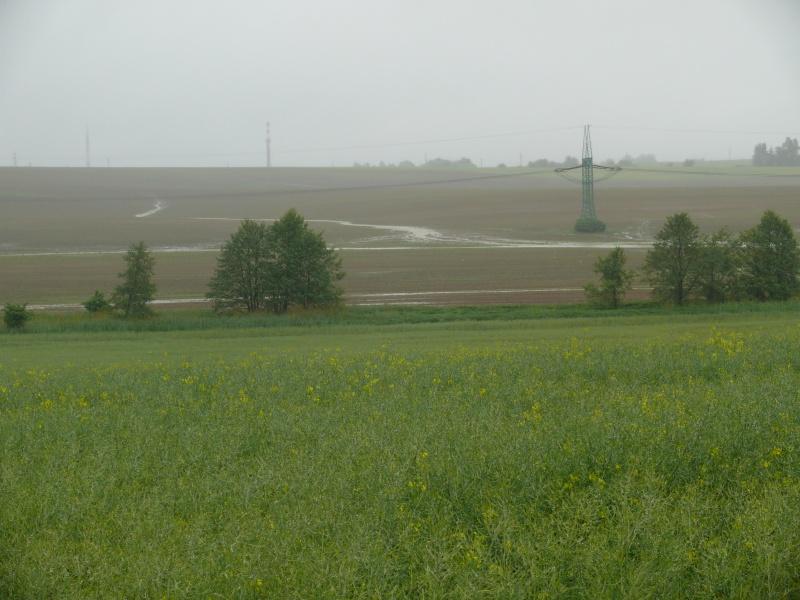 20100608f