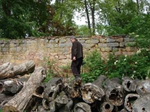 Tomáš Diviš pátrající po hnízdě lejska šedého. Foto J. Vaněk