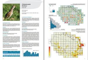 náhled na druhovou část - chřástal polní. zdroj:  Ptáci Krkonoš – atlas hnízdního rozšíření 2012–2014