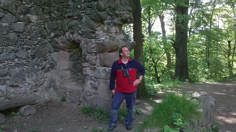Radko Waldhauser sleduje dění v korunách stromů u hradu Kumburk. Foto J. Vaněk