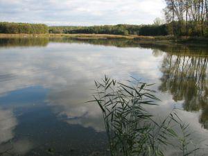 Holský rybník