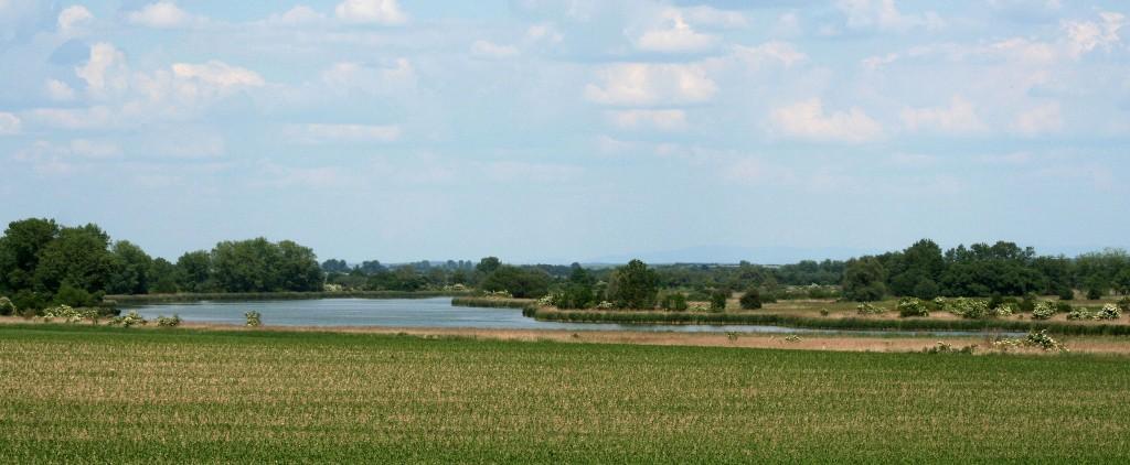 Krajina u Proudnického rybníka. Foto L. Kadava