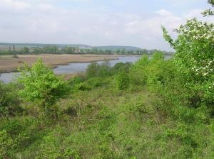 Žehuňský rybník, východní část. Foto L. Urbánek