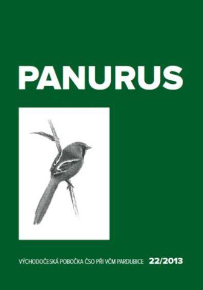 panurus_obrazek